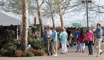 crowd plant market web