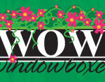 wow_windowboxes